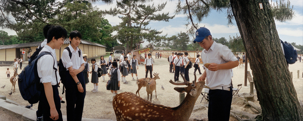 12-nara-boys-feeding-deer.jpg