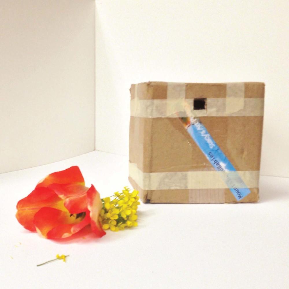 Light box-02-01.jpg