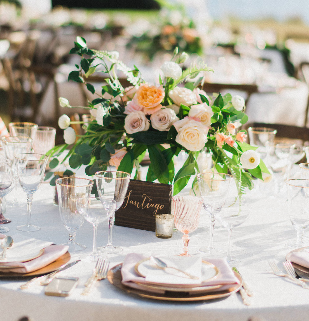 Kathleen & Francesco: Powel Crosley Estate