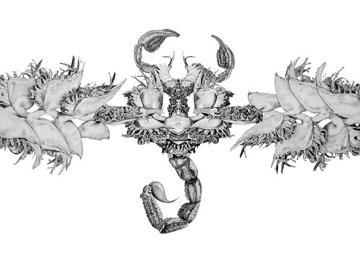 viophilia-judith-king.jpg