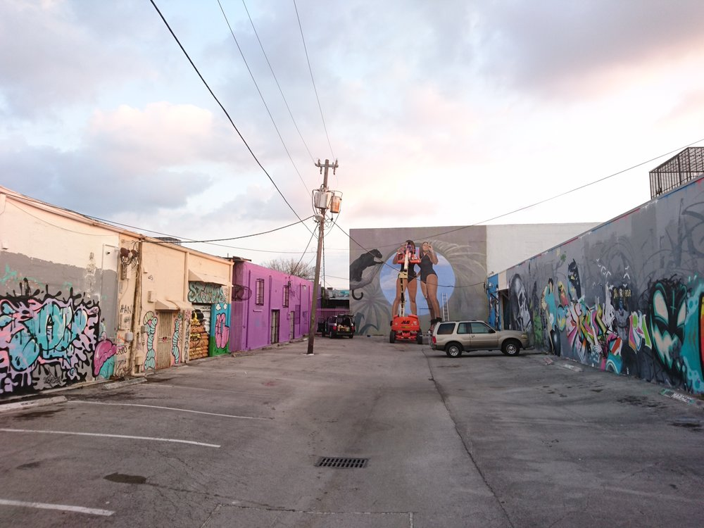the-color-dreamers-wynwood-walls-murals.JPG