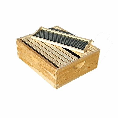 Complete, Medium 6 5/8-inch Box with Frames and Foundation