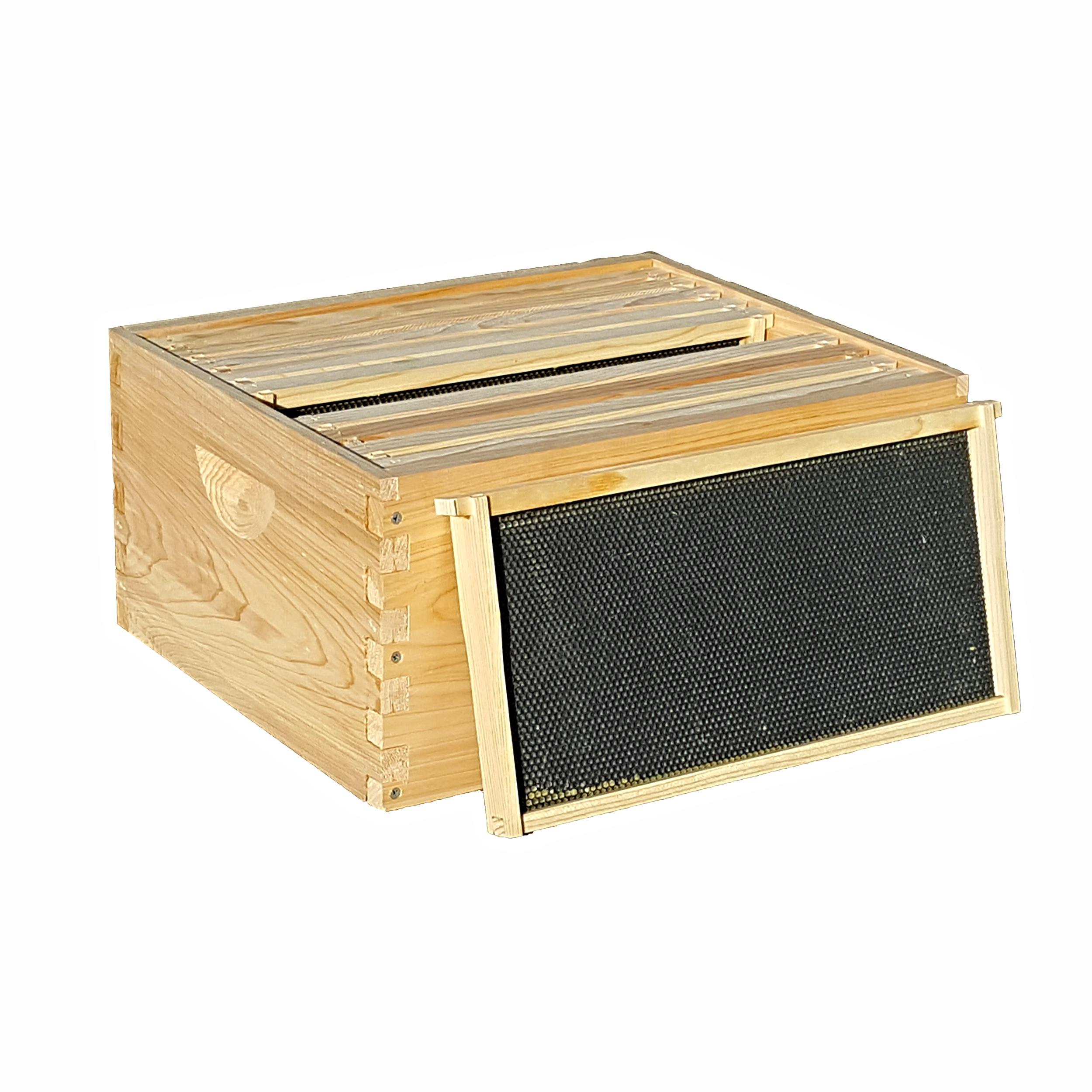 5Frame Medium 6 58 Complete Nuc Bee Hive wFrames /& Foundations Un-Assembled