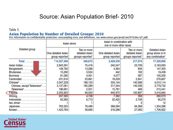 S7_Asian Population Brief.jpg