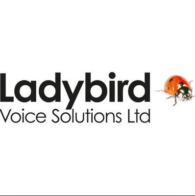 Ladybird Voice Solutions sponsers of SK Sports