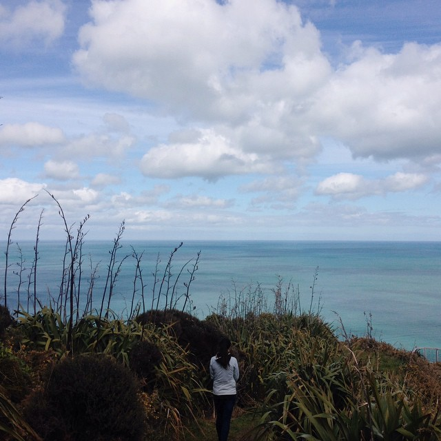 My sister on a west coast cliff top walk. 🌿🌾🌿