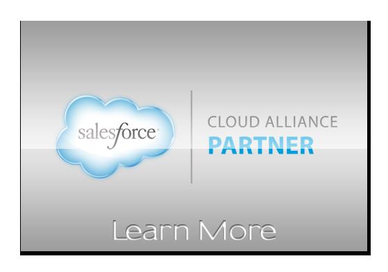 Sales Force Information
