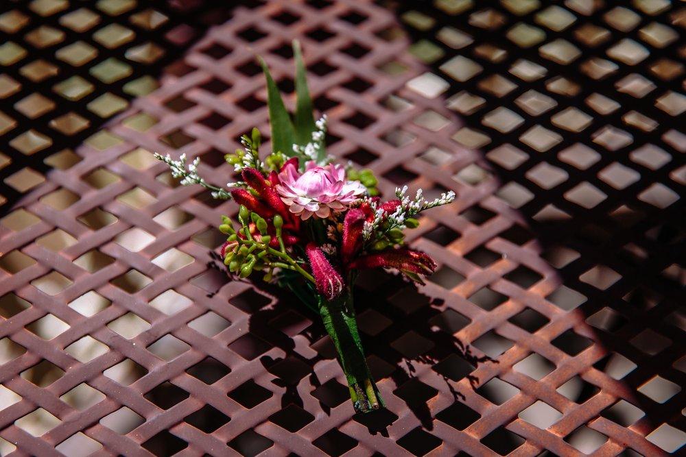 Lachlan-Jordan-Photography-5142.jpg