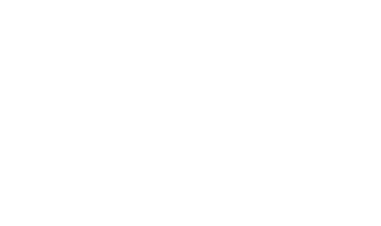 CasinoSoft.