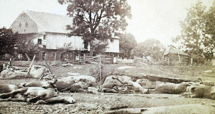 Dead horses lie near the Trostle Farm near the Peach Orchard.  The horses were part of an artillery unit in the III Corps under Daniel Sickles that had retreated to the position after fighting in the Wheatfield and made a stand, allowing other troops to retreat to safety.