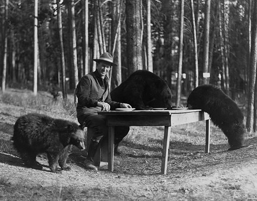 Horace Albright enjoying a picnic breakfast with some of the local wildlife at Yellowstone National Park