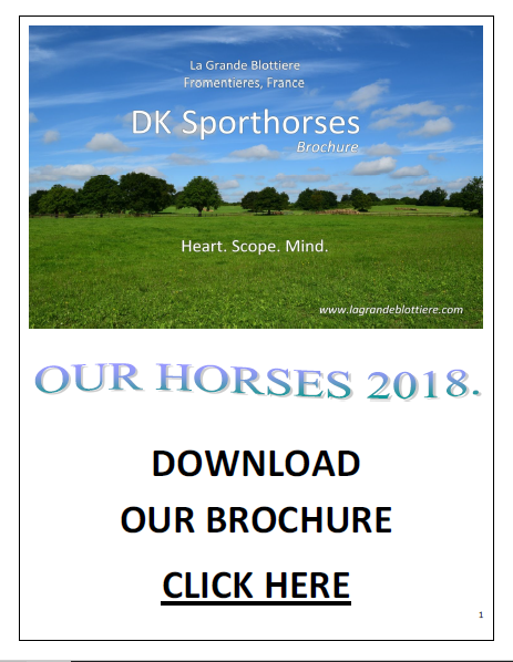 2018 DK Sporthorses Brochure -  FINAL (COVER) PIC.png