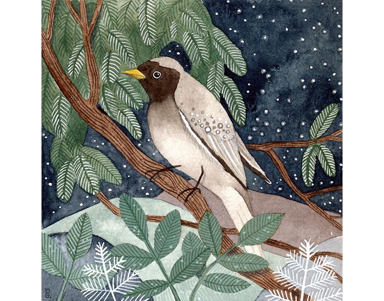 bird in the moonlight.jpg