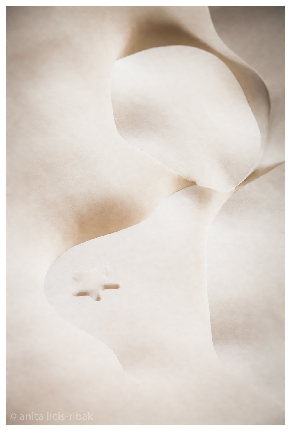 Gaudi-6.jpg