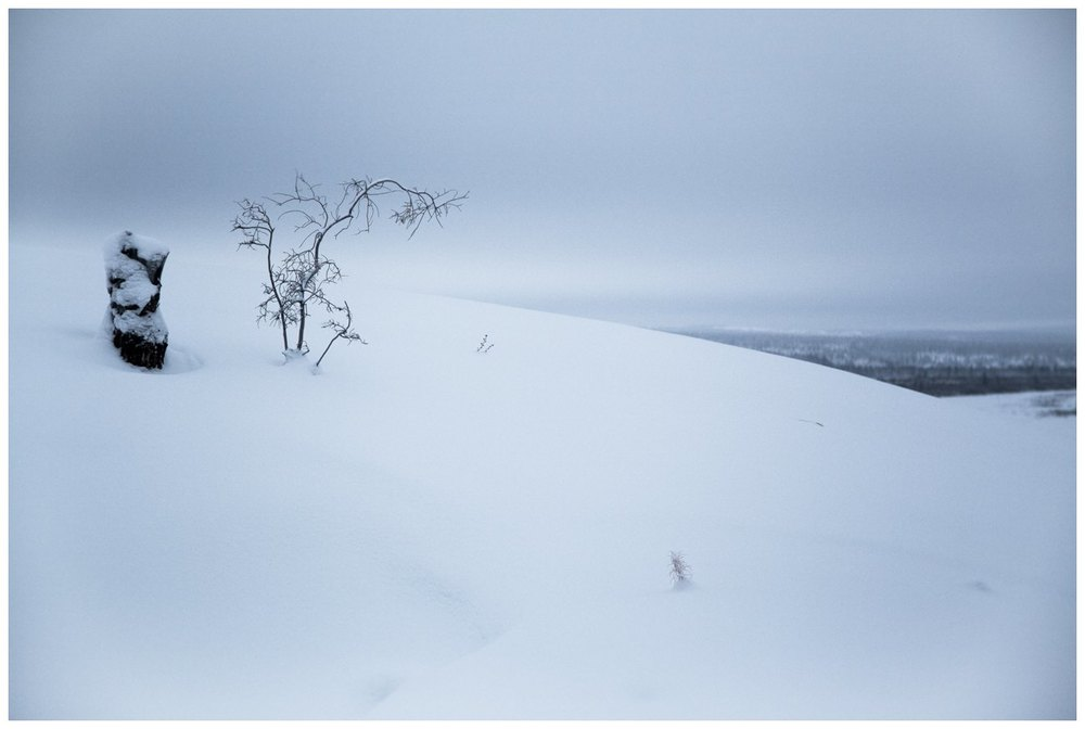 Licis-Ribak_Russian Arctic_Siberia_Chersky-1.jpg
