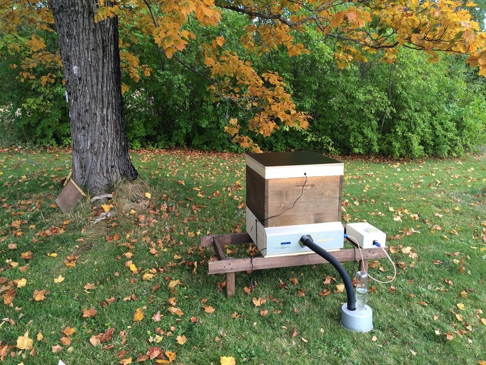 Bienensauna mit Akku