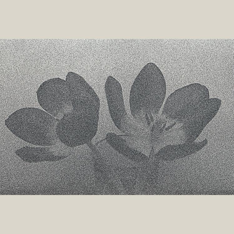 N-1.jpg