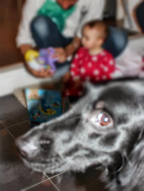Tilly+bomb.jpg