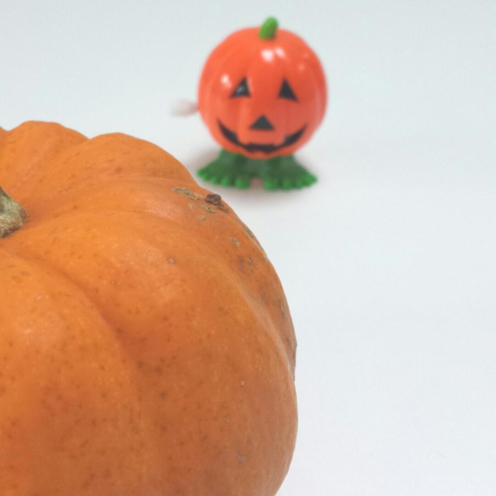 pumpkinpumpkin.jpg