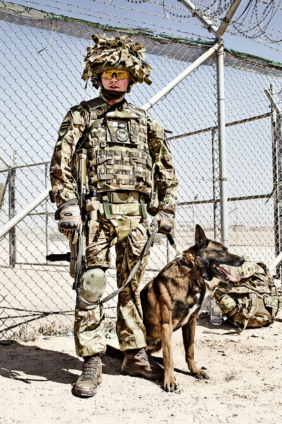 6 SHEET POSTER IN BLABY, WHETSTONE This is an image of one of the military working dogs and his handler, taken on the 28th April 2014. The dogs are highly trained and with their handlers will carry out tasks such as patrolling bases, searching vehicles and going on patrols on the front line.  At Camp Bastion the dogs are housed in air-conditioned kennels which have heating for the cold winter nights. When based out of forward operating bases the dogs sleep with their handlers.