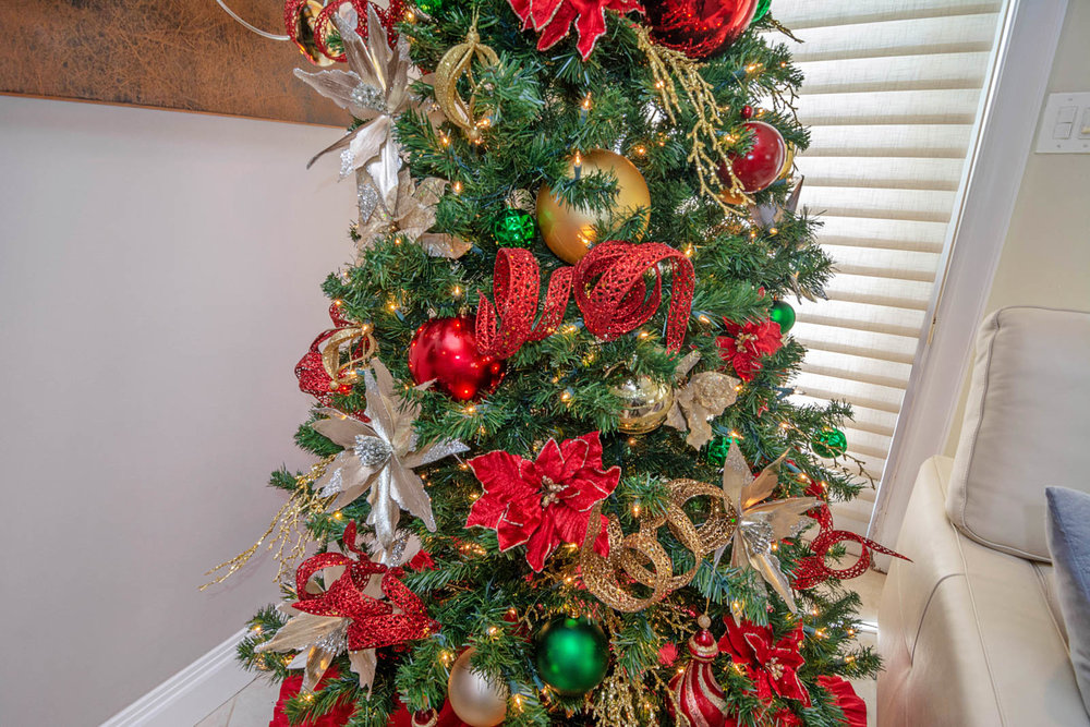Bridget Christmas Tree 1.jpg