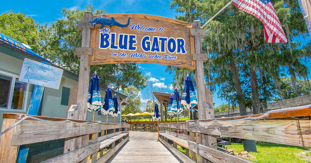 Click image for information on the Blue Gator