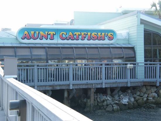 Aunt Catfish.jpg