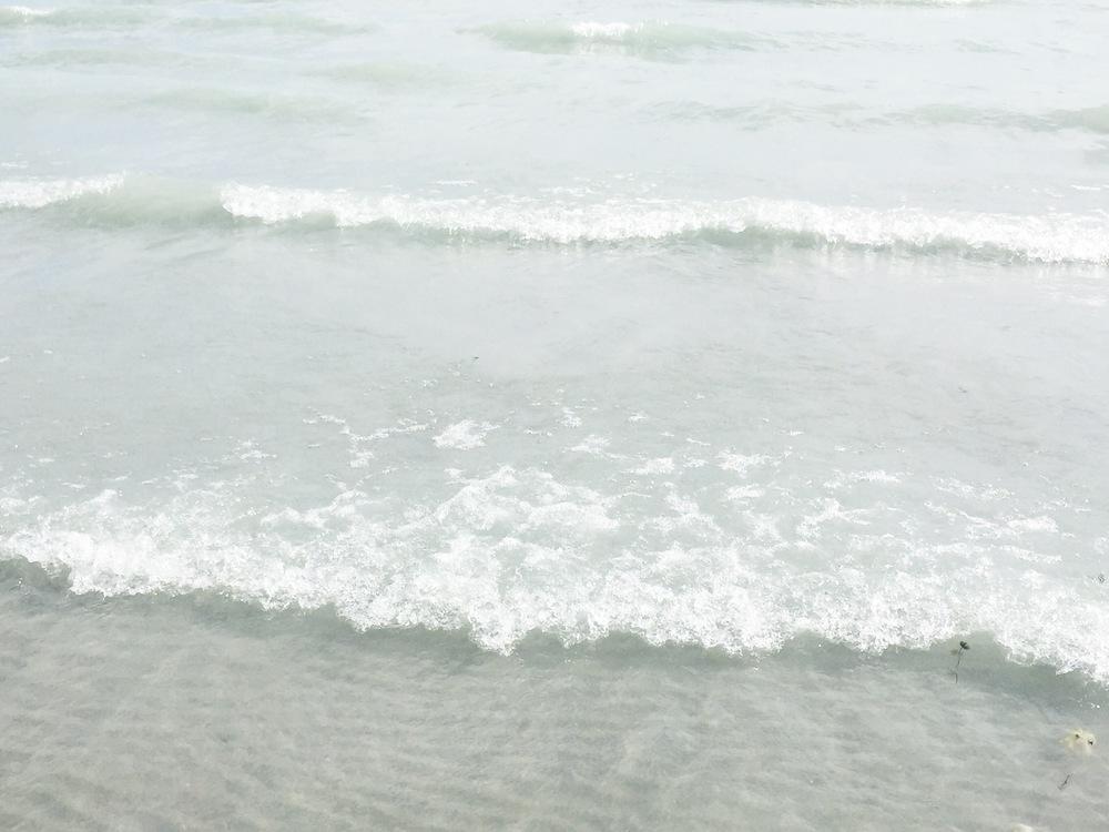 Photo Jun 21, 5 32 38 PM.jpg