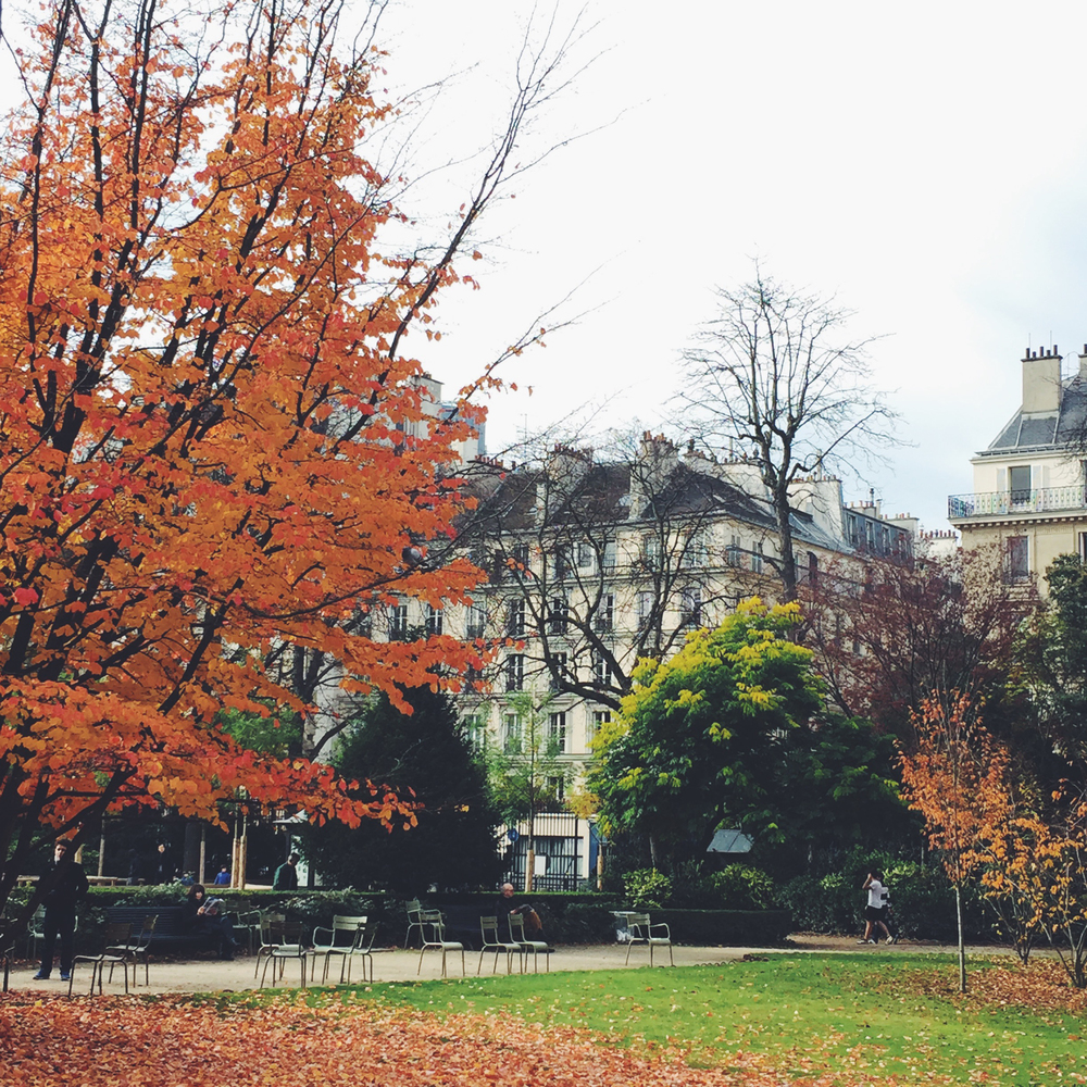 paris-photo-diary-JardinDuLuxembourg