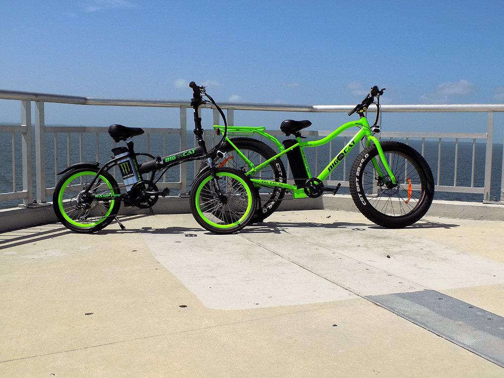 big cat bikes of tampa