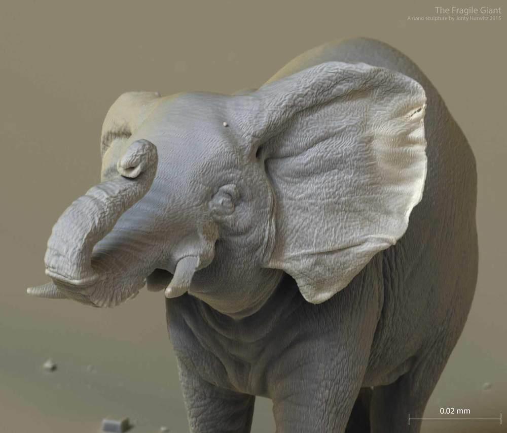 elephant_0206_4k_3m.jpg