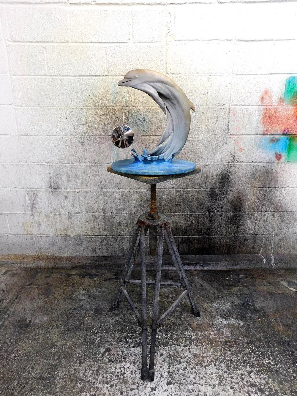 Dolphin-Jonty-Hurwitz-2.jpg
