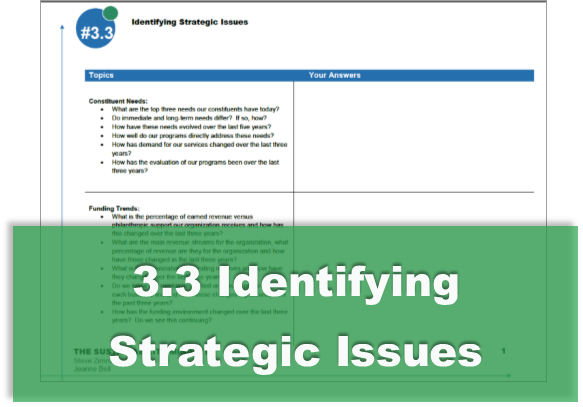 3.3 Identifying Strategic Issues