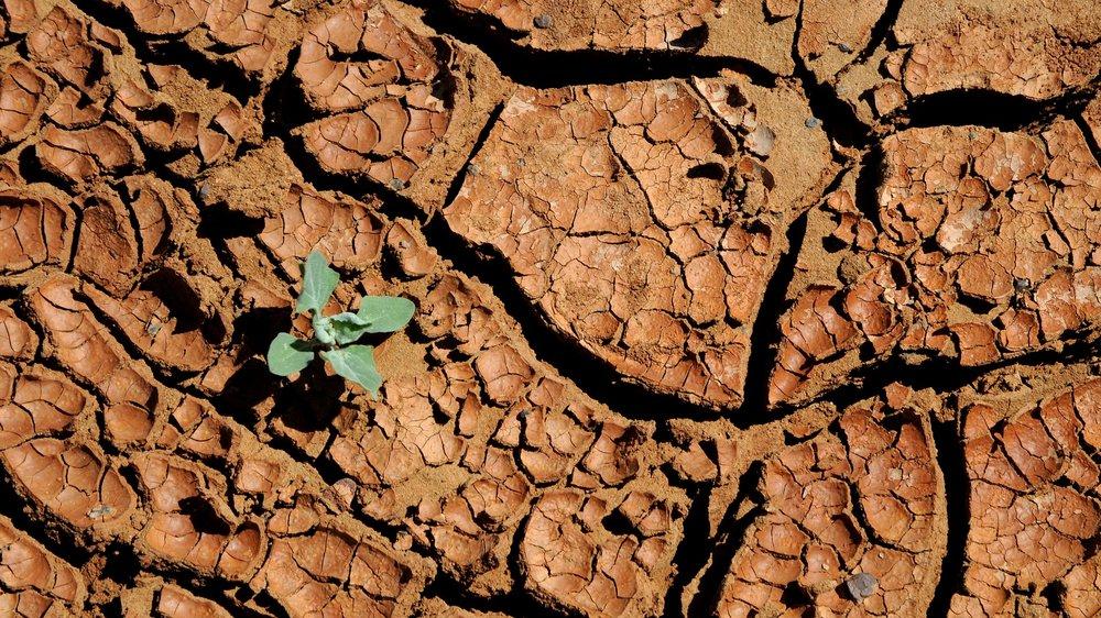 mongolia-3046018_1920.jpg