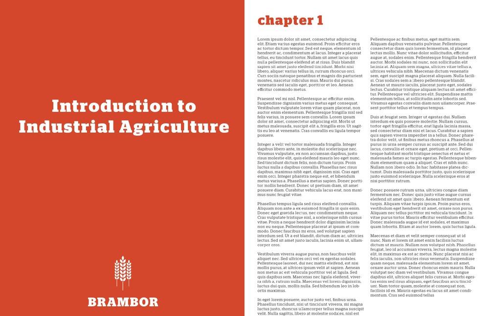 brambor_final_presentation_Page_11.jpg