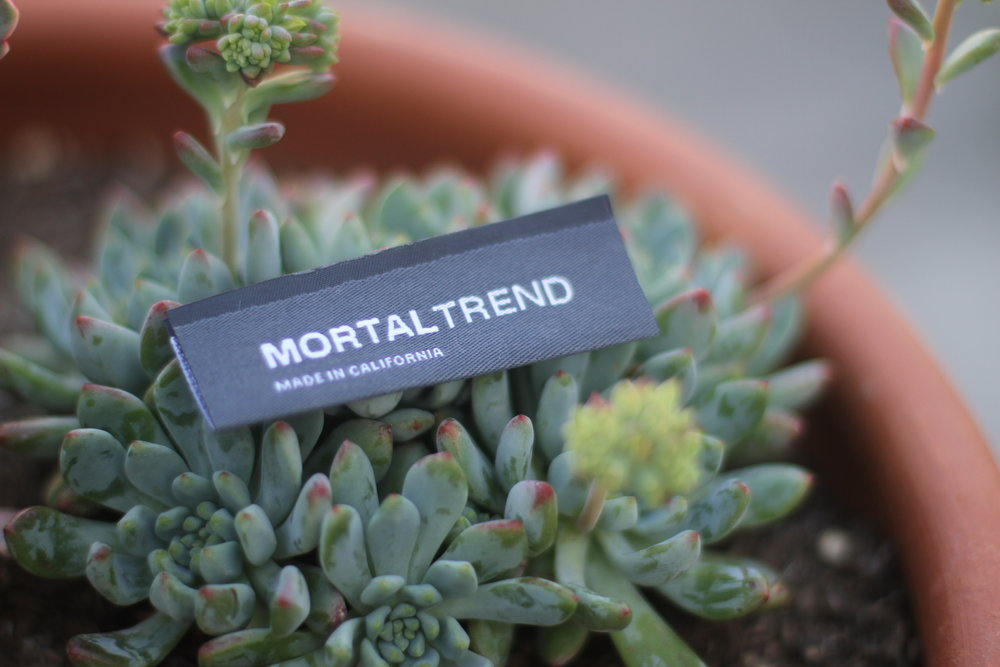 Label in Succulent.JPG