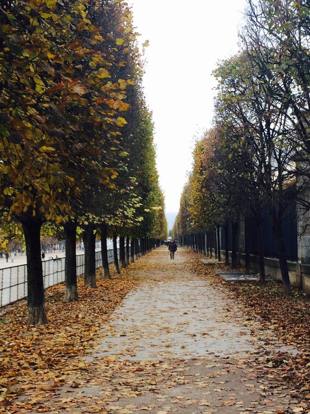 Les Jardin de Tuileries