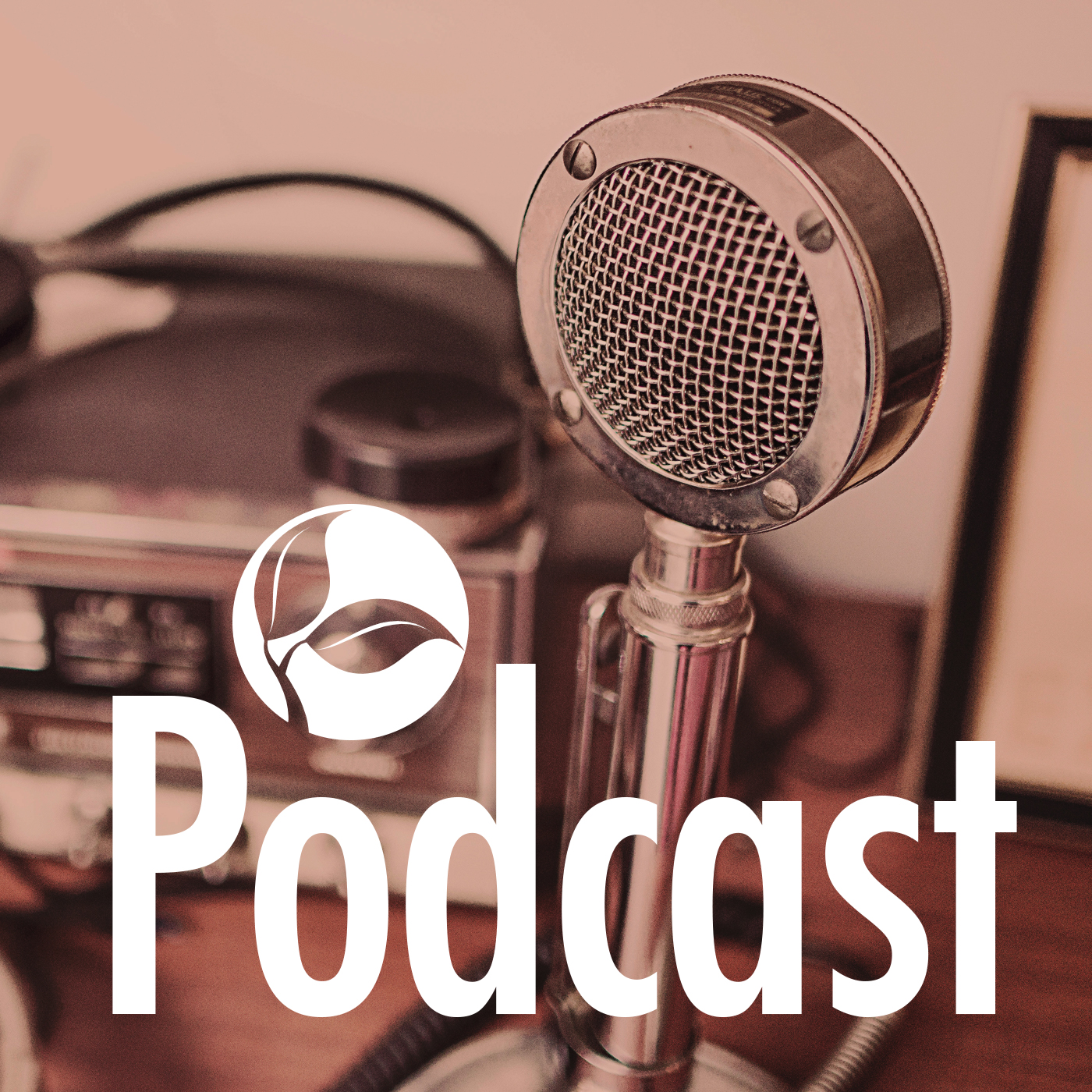 Teaching Audio - THE SANCTUARY
