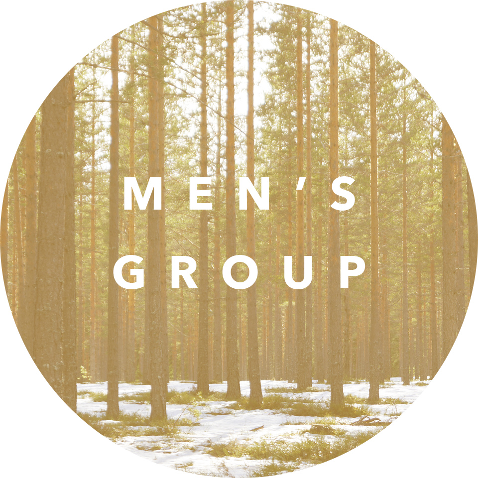 Time: Meets quarterly on Saturday morning. Leader: Chris Sheneman Email: chris@newsongvineyard.com