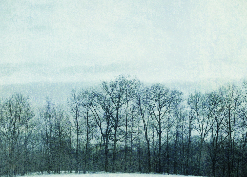 Blue Winter, 2009 | 14x11 | $75