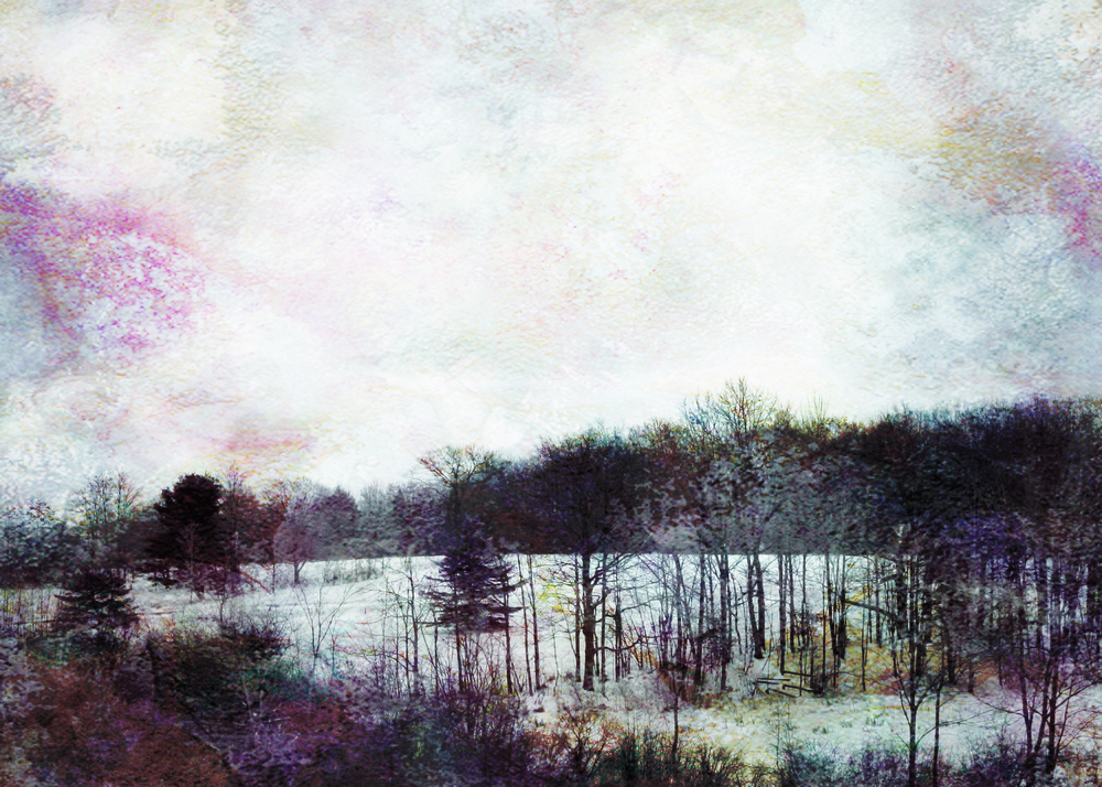 Pink Winter, 2009 | 14x11 | $75