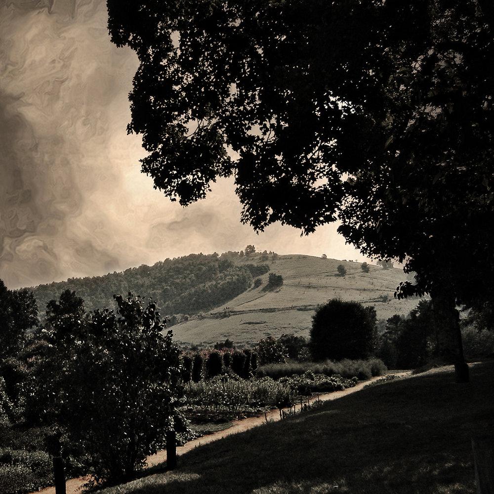 Monticello, 2008 | 12x12 | $75