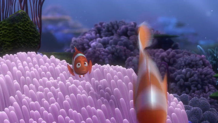 Spanish Review Of Finding Nemo | 2017, 2018, 2019 Ford Price, Release Date, Reviews