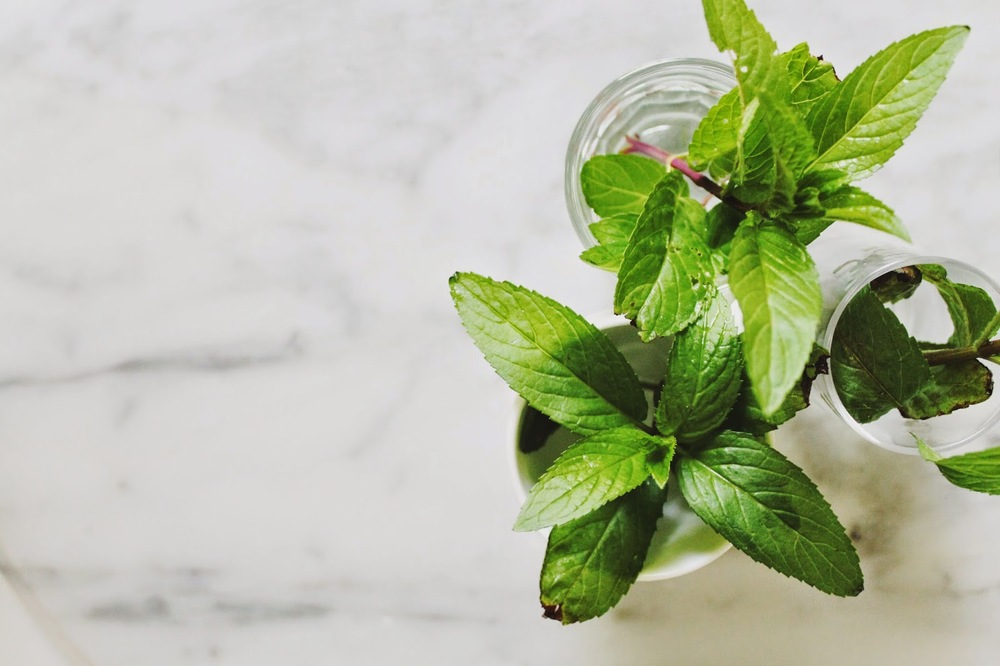 Simple+Iced+Mint+and+Green+Tea+::+www.The-Chefs-Wife.com++++++++.jpg