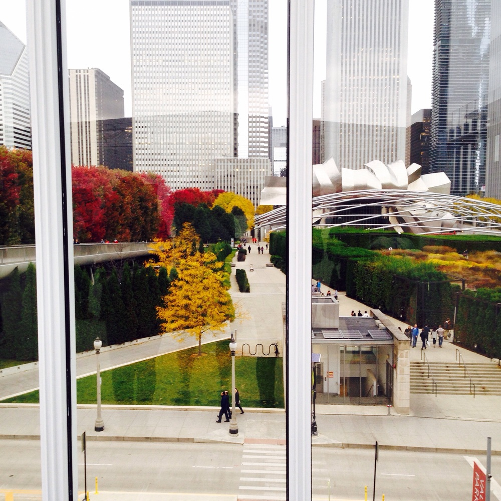 I took them to the roof of my school! You get to see majority of Millennium Park