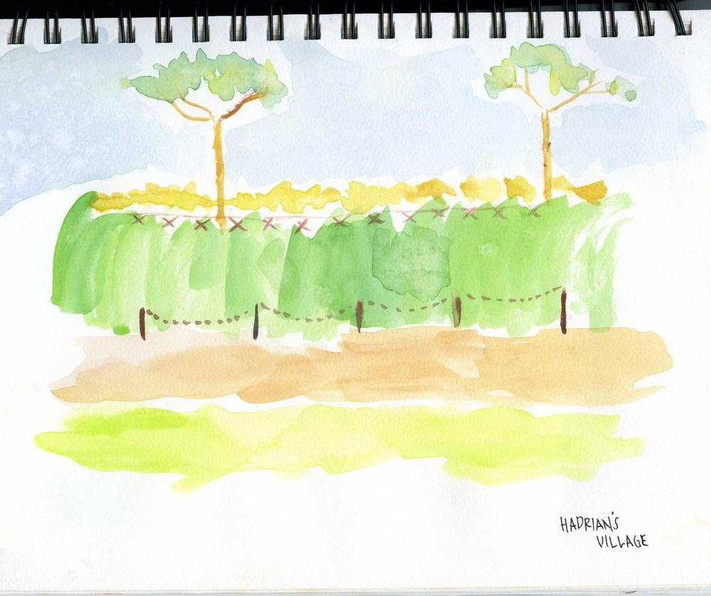 Drawings-2.jpg