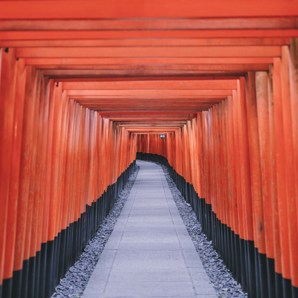 japan tori gates.jpg