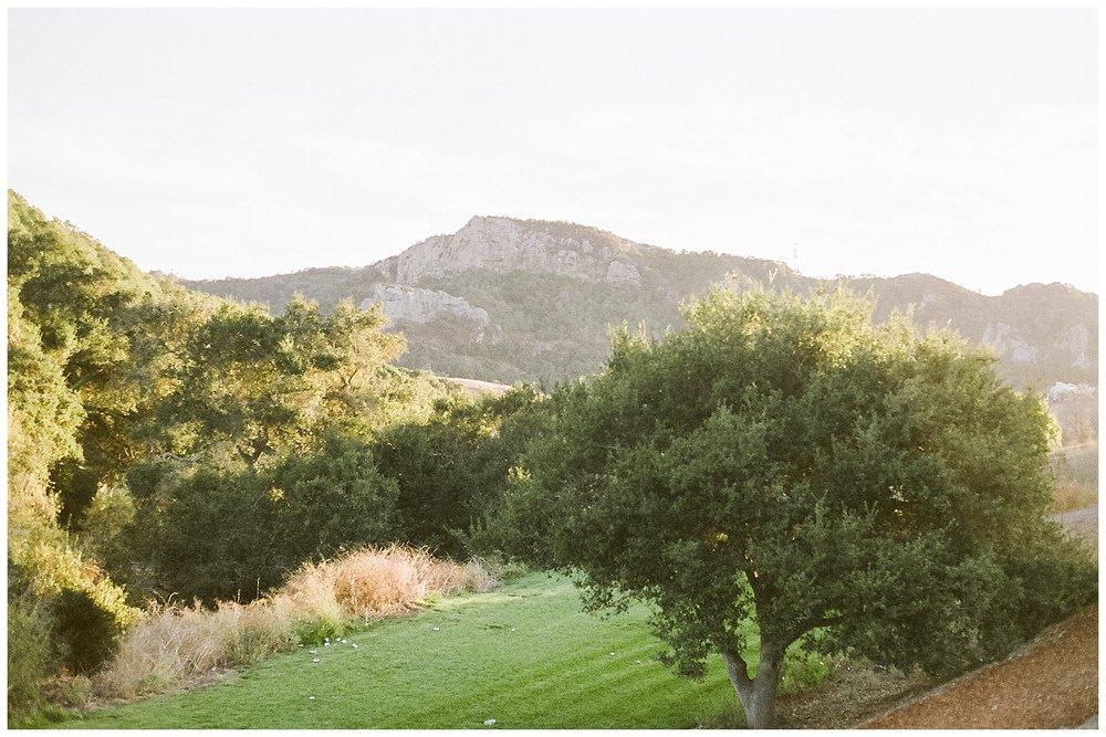 SAN+LUIS+OBISPO+WEDDING+PHOTOGRAPHER-1.jpg