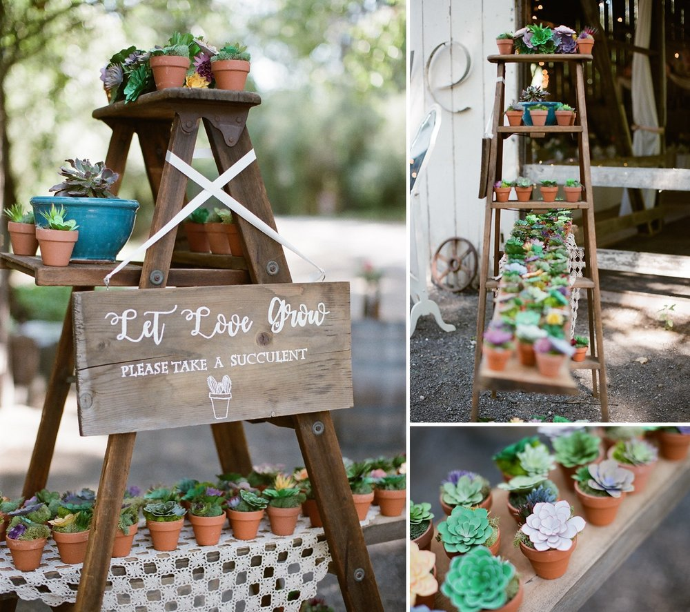 santa barbara wedding photography succulent gifts