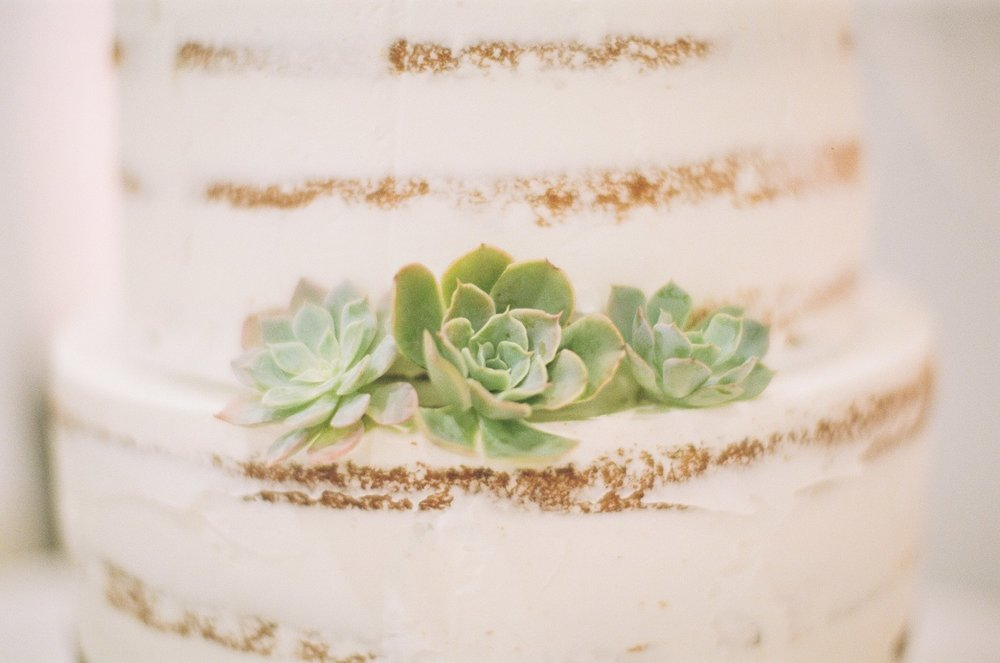 succulent wedding cake los angeles photographer